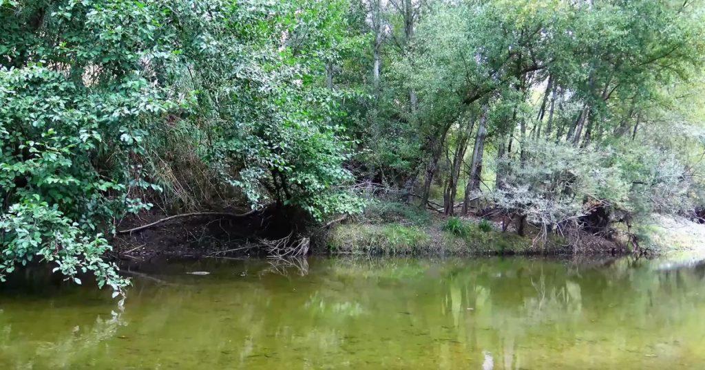 La storia del fiume Mingardo – video
