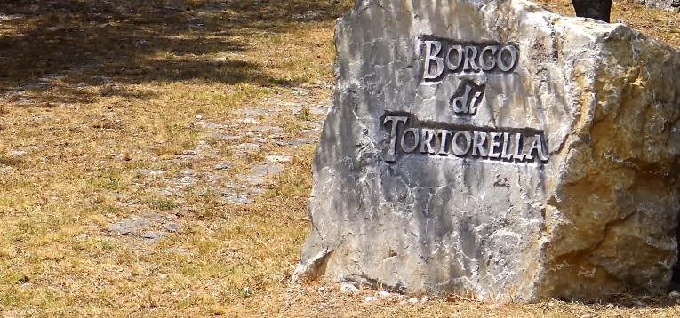 tortorella - Tortorella presentato il portale web e' online