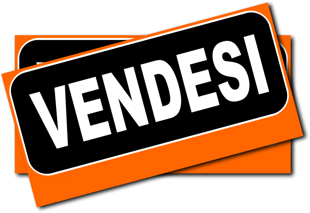 vendesi domini www.pndcvda.it – com e parconazionaledelcilentovallodidianoedalburni.it prezzo base 15.000 euro cadauno