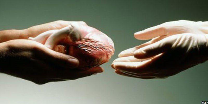 1 2 - Area archeologica di Paestum, campagna di sensibilizzazione per la donazione degli organi