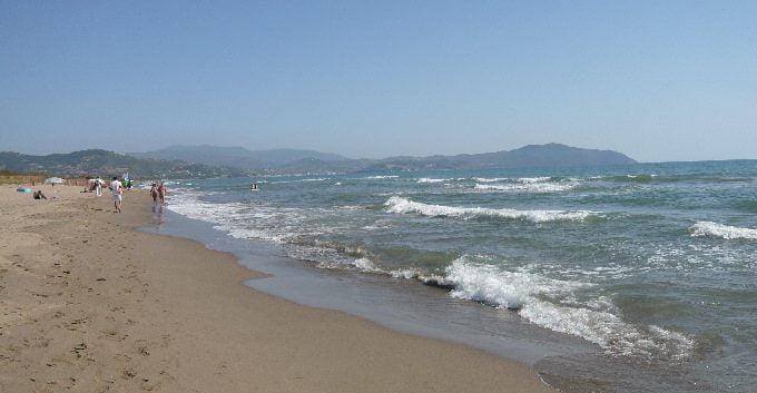Paestum spiaggia - Paestum Sea Life denuncia la cattiva gestione della risorsa del mare