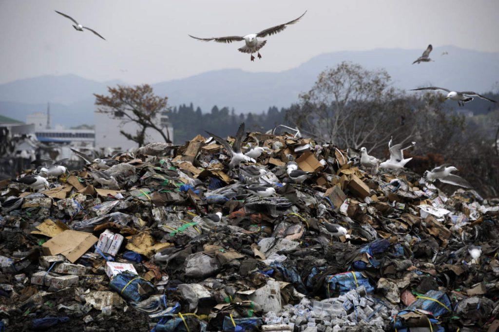 A Polla 2000 tonnellate di rifiuti