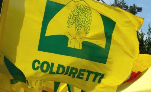 """coldiretti - Coldiretti: """"Attacco senza precedenti all'agricoltura più green d'Europa"""""""