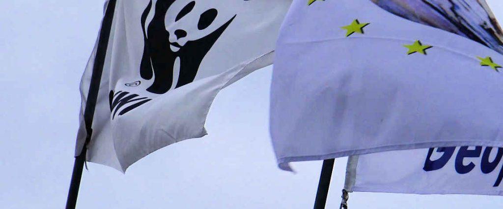 Oasi WWF di Morigerati – Grotte del Bussento / foto, video ed info