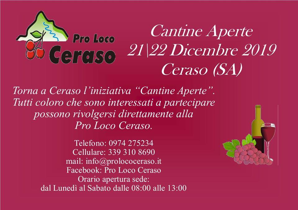 Cantine aperte 2019 ceraso Cilento Programma Contatti - Ceraso, cantine aperte dal 21 al 22 dicembre 2019