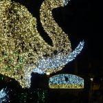 DSC01639 150x150 - Luci d'artista a Salerno, le prime foto - IL VIDEO