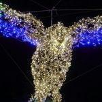 DSC01642 150x150 - Luci d'artista a Salerno, le prime foto - IL VIDEO
