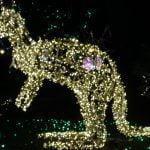 DSC01647 150x150 - Luci d'artista a Salerno, le prime foto - IL VIDEO