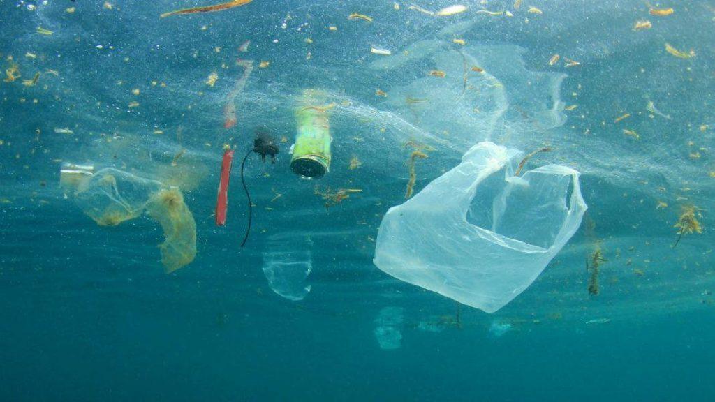 """Legambiente Peastum, Clean Sea Life """"tutti insieme per un mare pulito"""" – 30 Novembre"""