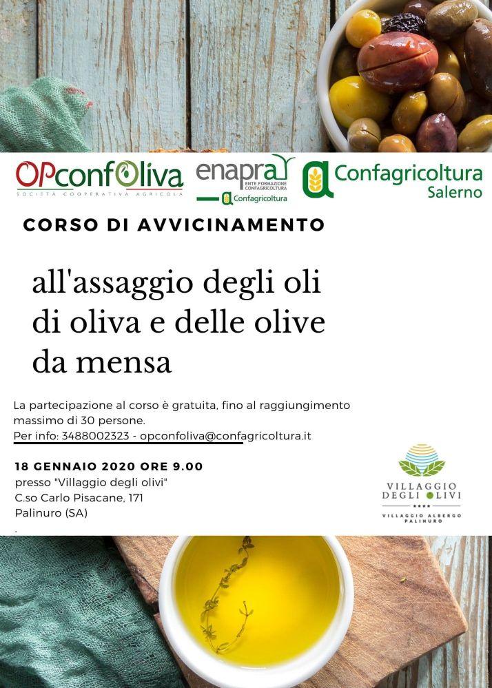 13012020 corso assaggio olio palinuro - Palinuro, corso gratuito assaggio degli Oli da Olive e delle Olive da Mensa