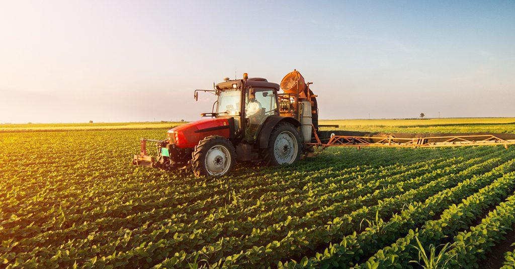 Agricoltura nessuna agevolazione saldo IMU per i coadiuvanti  1024x536 - Regione Campania: in arrivo i fondi per Agricoltura, sviluppo e competitività