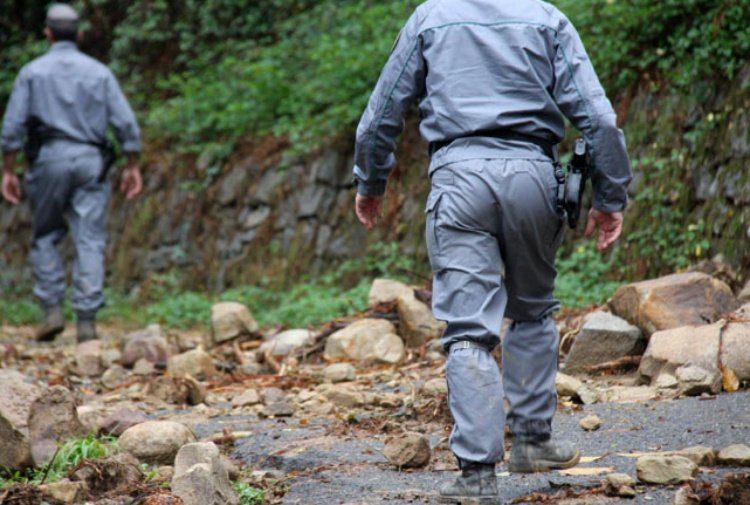 Controlli dei Carabinieri Forestali nel salernitano: 12 denunciati