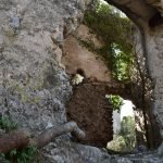 DSC 0004 150x150 - San Cipriano Picentino, il Castello di Montevetrano - Video e foto