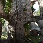 DSC 0005 150x150 - San Cipriano Picentino, il Castello di Montevetrano - Video e foto