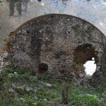 DSC 0027 150x150 - San Cipriano Picentino, il Castello di Montevetrano - Video e foto