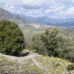 DSC 0037 150x150 - San Cipriano Picentino, il Castello di Montevetrano - Video e foto