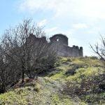 DSC 0038 150x150 - San Cipriano Picentino, il Castello di Montevetrano - Video e foto