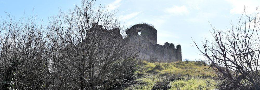 castetop - San Cipriano Picentino, il Castello di Montevetrano - Video e foto