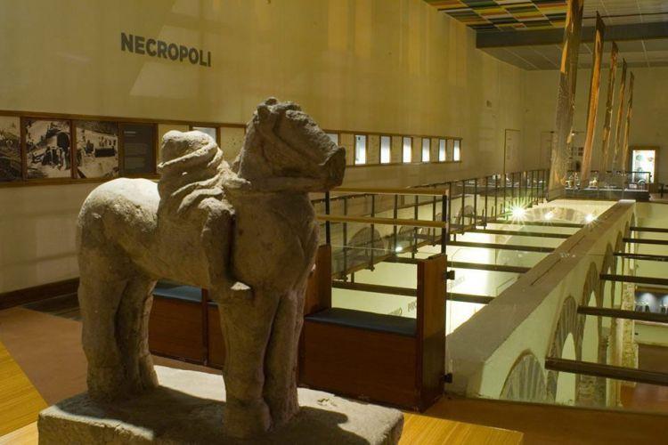 Riapertura dei musei e biblioteche Provinciali, come fare per accedervi