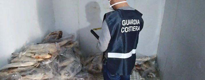 Scario: guardia costiera sequestra 1430 chili di pesce