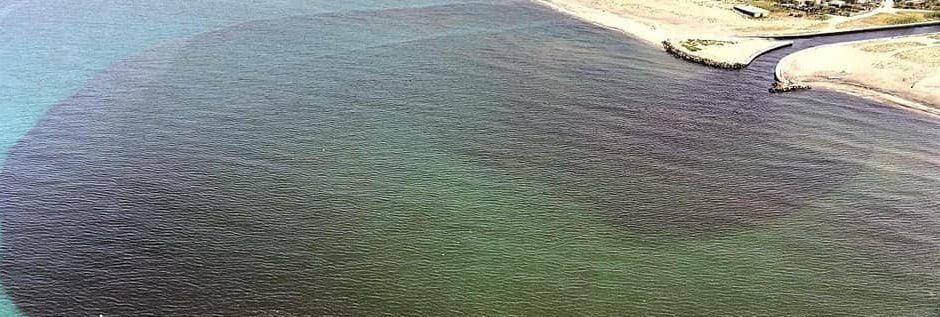 Controlli del NOE alla foce del Sarno, in attesa dell'esito
