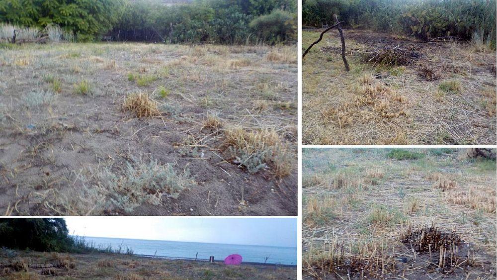 Villammare, ennesimo danno grave alla fascia dunale protetta dell'Oliveto