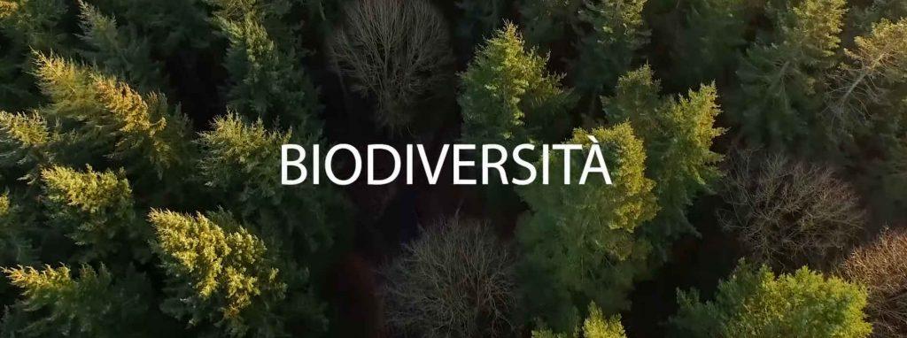 Giornata Mondiale dell'Ambiente con i Ministri Costa e Bellanova –  direttaweb ore 12.00