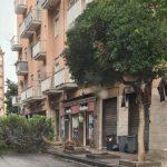 8 150x150 - Tromba d'aria a Salerno, sdradicati grossi alberi, auto coinvolte - le foto ED IL VIDEO