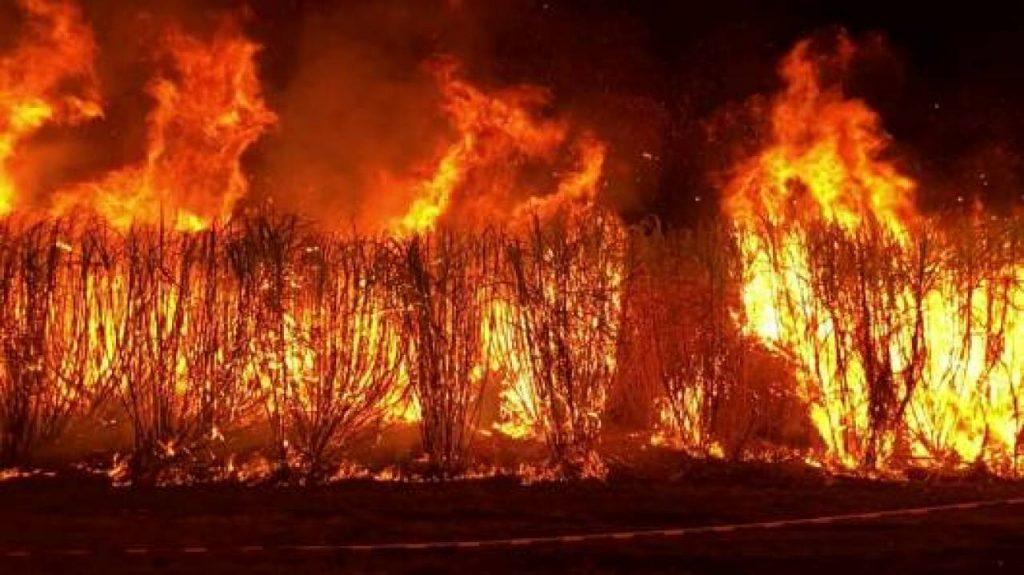 Prosegue l'incendio divampato ieri ad Atena Lucana ed estesosi a Sala Consilina