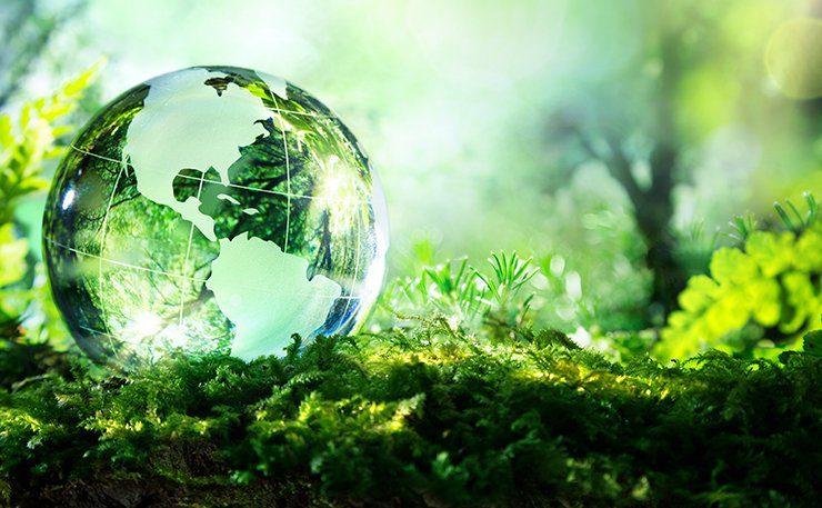 biodiversit - Giuseppe Conte, intervenuto al primo summit Onu sulla biodiversità