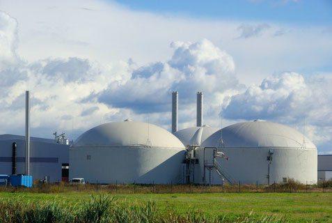 Castellabate, l'impianto a biomasse non si farà