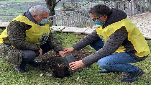 Trentinara, Lions Salerno per la piantumazione di alberi