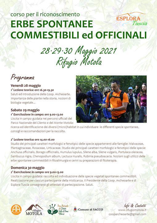 181563539 275117751007847 6964880988249933655 n - Sacco: Rifugio Motola, Corso su erbe spontanee commestibili ed officinali