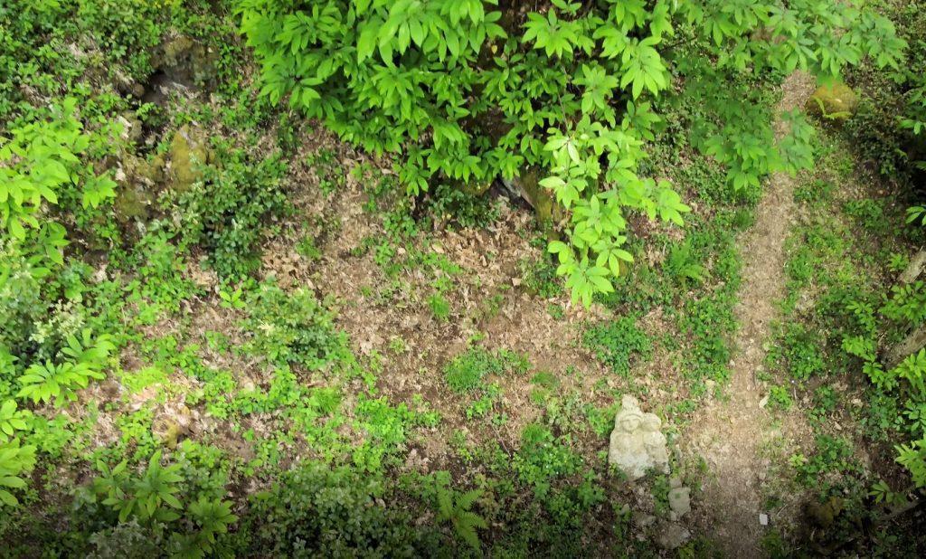 Omignano, il primo castagnone (di cinque) con il drone ed a 360° – video e foto