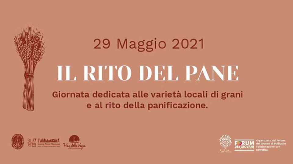 """ilrito - Pollica, """"IL RITO DEL PANE"""" - 29 maggio 2021"""
