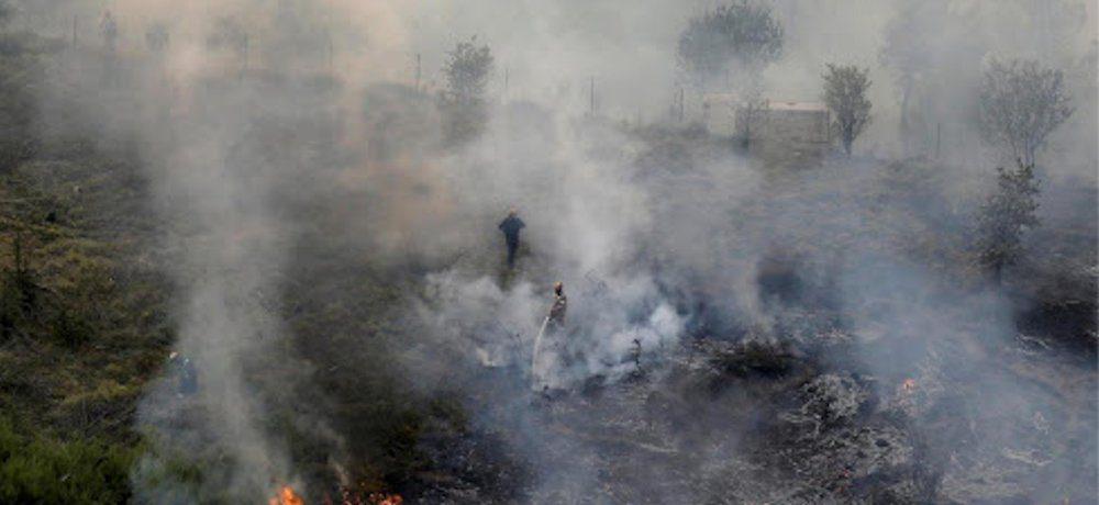 incendio - Capaccio, incendio distrugge macchia in zona Laura