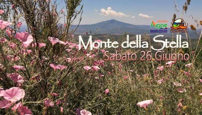 Escursione Monte Della Stella San Mauro Cilento 2021 - San Mauro Cilento, Escursione Monte Della Stella - 26/6/21