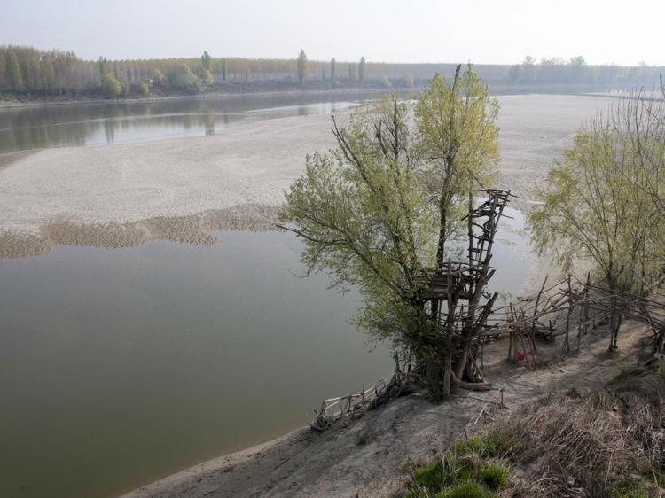 po siccita fg - Clima, lo studio: 150 anni di cambiamenti hanno modificato biodiversità in Italia