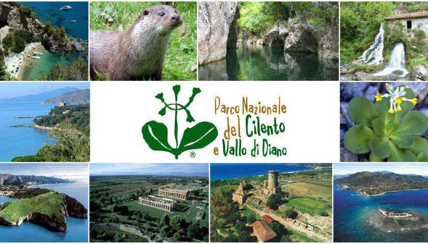 testata 04 04 04 840x480 1 - Il Parco Nazionale del Cilento Vallo di Diano e Alburni intensifica la lotta contro i danni ambientali